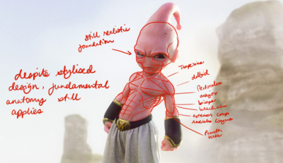 vitorugo anatomy analysis