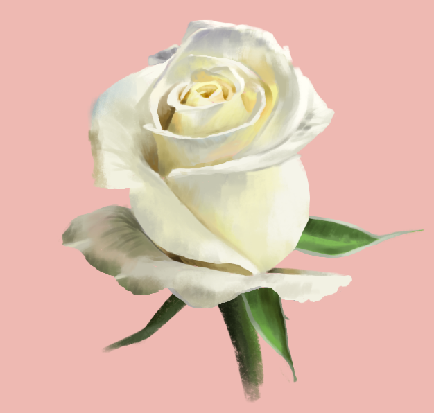 rose_study